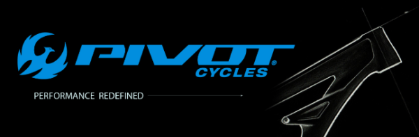 CAD Hardware Provider for Pivot Cycles